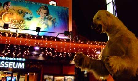 colosseum-icebear-closeup.jpg