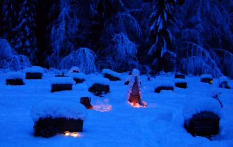 graver-lys-skog-kleinblue.jpg