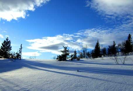 fjellbjork-skygger-himmel.jpg