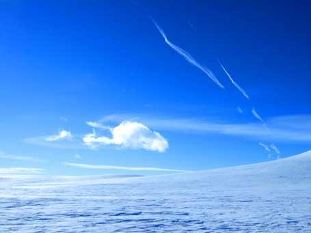 flystripe-snow.jpg