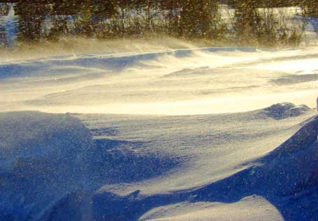 vind-skavler.jpg