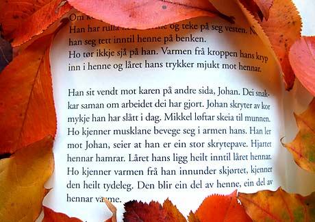 Utdrag fra Ingen må vite av Aina Basso (2008, s40).