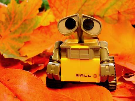Wall-E på norsk høstløv, oktober 2008.