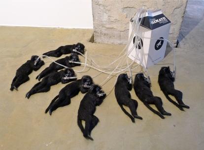 "Troels Carlsen: ""Extinction Group"" (2006). Foto: Oda Bhar."