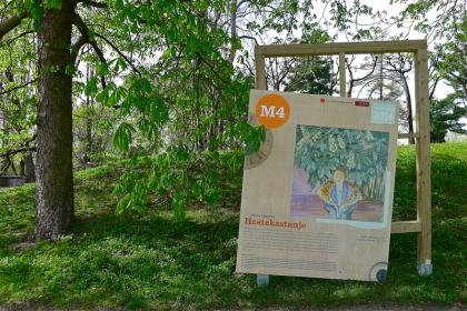 «Munchstien» i Botanisk hage er del av utstillingen. Når kastanjetrærne blomstrer senere i år vil det her bli anledning til å sammenlikne virkeligheten med Munchs observasjon. Foto: Oda Bhar.
