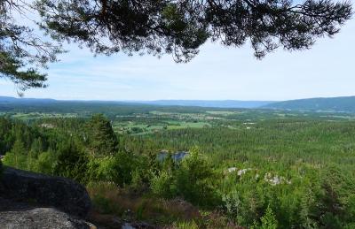 Utsikt fra Kittelsen-museet, som ligger på toppen av åsen, tjue minutters kjøretur ovenfor Blaafarveværket. Foto: Oda Bhar.